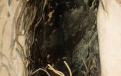 19945-detail-of-tennant-farm-289_