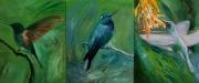 Hummingbird Triptych