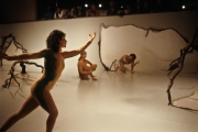 1988-2-stonewall-4-exhibition-tucson-museum-of-art-performance-installation
