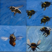 more bees copy
