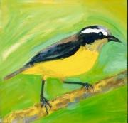 Lesser Goldfinch 2