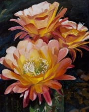 Golden Cyrus Blooms