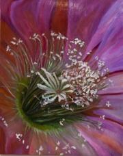 PV Cactus Bloom