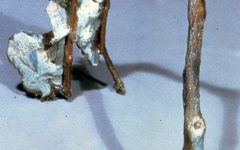 1985-natural-arch-bronze