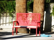 Red Desert Willow Silhouette Bench