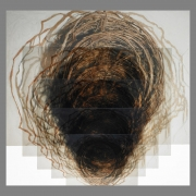 2005-nesting-photo-translucents-installed-as-low-releif-60x-64x6inches