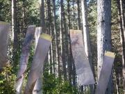 2010-prickly touch 2-A-sculpturefest park vermont